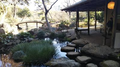 東京都施設無料開放① 六義園