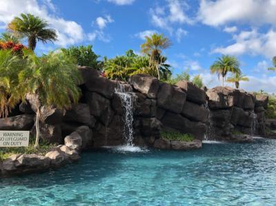 *50th Anniversary Hawaii 2018⑦*ハワイ島*キングスランド第Ⅰ期