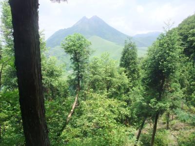 由布岳の展望台・倉木山1160m