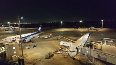 【チャイナの旅路を行くおれさ】中国「上海、蘇州」へ 最終日