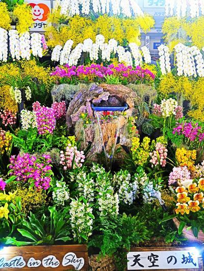 世界らん展14 〔天空の城〕 ディスプレイ部門-最優秀賞 ☆豪華で壮大な景観を創造し