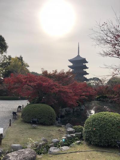 ☆月イチお出かけ:2018年12月☆京都女子呑み旅行