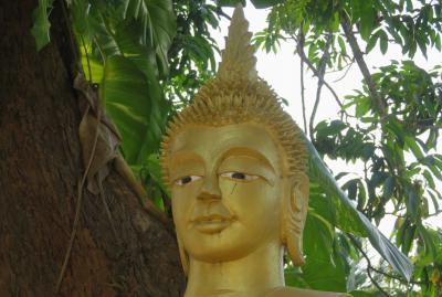 2019早春、ベトナムとラオスの旅(7/28):2月13日(4):ルアンパバーン(4):世界遺産の街・ルアンパバーン、市場、仏教寺院