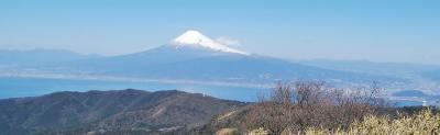 伊豆ジオパーク - 2 玄岳(多賀火山群)~ 達磨山・金冠山へ