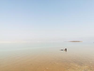 エジプト・南西アジア7カ国 女一人旅 83日間 イスラエル編