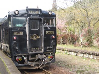 冬の九州縦断鉄道旅+α(はやとの風、しんぺい、やませみ・かわせみ編)