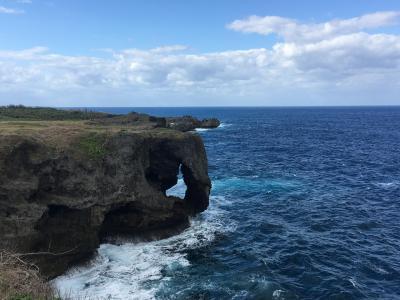 めんそーれ♪沖縄旅行 万座毛など 2019.1 No.4