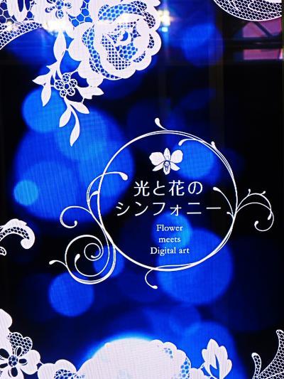 世界らん展23 光と花のシンフォニー 初体感 ☆最先端メディア-Digital artの映像美