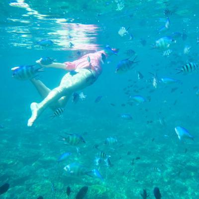 レダン島旅行記 (3) レダン島でお勧めアイランドホッピング シュノーケルツアー