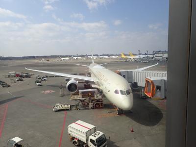ヨルダン① エティハド空港で往復