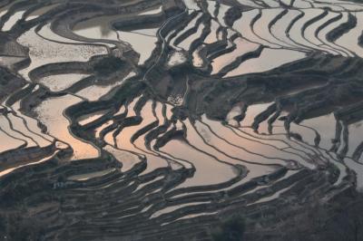 羅平、元陽、石林♪ 中国春の雲南省感動の絶景巡り♪ 出国から2日目夕暮れの元陽棚田♪