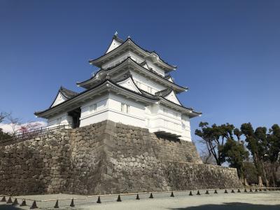 【神奈川】日本100名城、小田原城を探る!