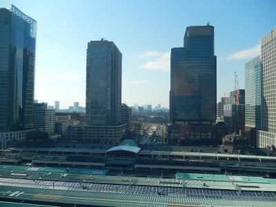 グラントウキョウノースタワー12階より見られる風景