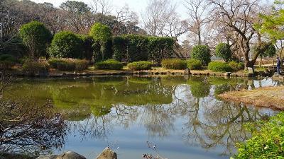 服部緑地公園(3) 日本庭園と花の道に咲く花。
