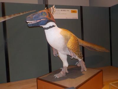 バスツアー 工場見学。茨城自然博物館