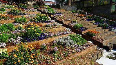 服部緑地公園(5)完 都市緑化植物園 下巻。