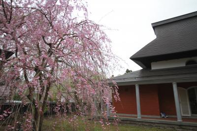 初春の秋田・岩手旅行2泊3日(秋田編)