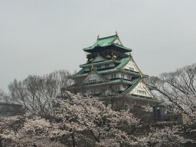大阪たび:春 2018年春花見は大阪城へ!