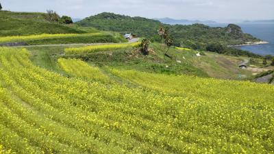 5月の豊島(2回目)と犬島旅①~豊島編~