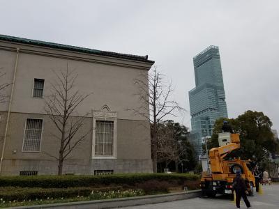 大阪市立美術館 フェルメール展