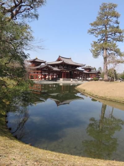孫との2人旅は手始めに京都(名所巡り編)興味を持った場所を移動しつつ、旅の楽しさを感じてほしいな~と(^^)ばあばは張り切りました。