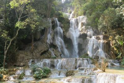 2019早春、ベトナムとラオスの旅(14/28):2月14日(7):ルアンパバーン(11):クアンシーの滝、滝壺プール、トラバーチンの光景