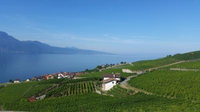 スイス ベルナーオーバーランド&レマン湖畔の旅⑥