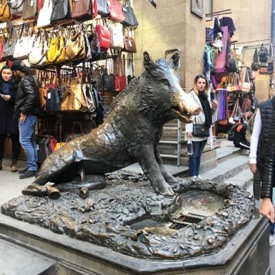 猪年にイタリアフィレンツェの幸福が訪れると言われるポルチェッリーノに会いにいく!