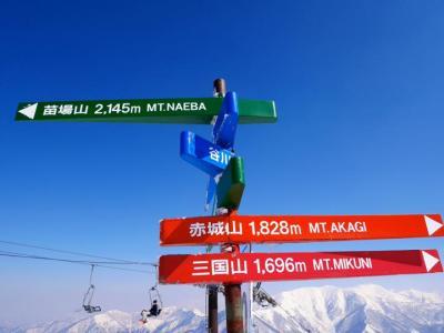 2019年:春:第5回:毎年恒例となってきました!友達13人と苗場スキー場へスキー合宿旅行!ふふふ♪L'Arc~en~Cielのボーカリスト!hydeに会ってしまった!!(2泊3日)