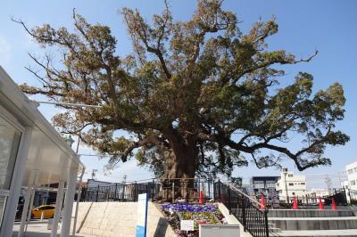 旧東海道は、今どうなっているんだろう(2)・・中泉から池田の渡船場まで