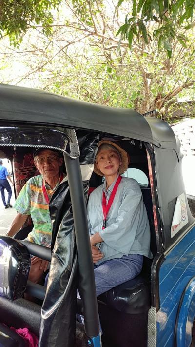 車椅子の妻と 第22弾 Holland MaasDam スリランカ編