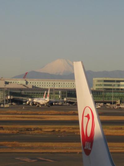 冬の京都旅~新宿バスタから大阪伊丹空港まで~