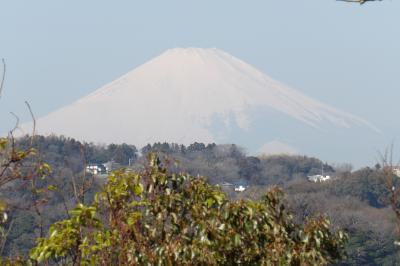 祇園山ハイキングコース上り口から祇園山見晴台へ