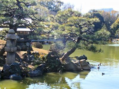 """""""深川散歩道"""" 清澄庭園へ遊びに行こう!(・ω・)/♪"""