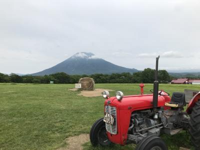 3歳子連れ北海道旅行 ~3・4日目 ニセコ編~