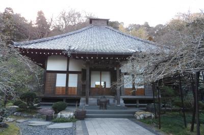 鎌倉光則寺-2019年春