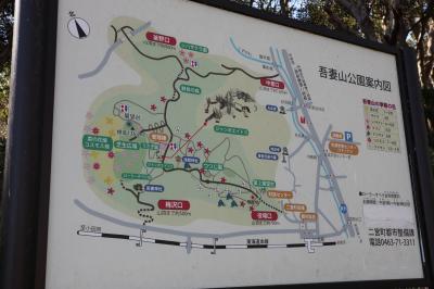 二宮町 吾妻山公園からの絶景
