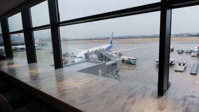 2019春旅。伊丹空港ANAスイートラウンジ体験
