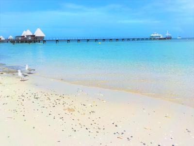 ニューカレドニア シュノーケリング 島巡り(アメデ島 メトル島 カナール島)と 南太平洋のプチフランス を楽しむ 「ぼっち旅…」~Part.2~