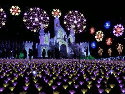平成最後の年末年始は栃木で!〈後編〉 ~あしかがフラワーパークのイルミネーションに感動♪~