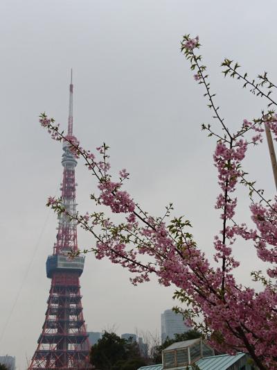 久々のTokyo 終わってみれば港区内の神社仏閣巡りの旅でした!
