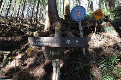 【塔ノ岳】芸術女子は更に山を登る