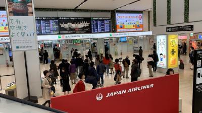 """2019JAL修行3_""""お好きな1カ月間いつでも""""JALグループ国内線 FLY ON ポイント2倍キャンペーンに登録した3月なのでFUKまで飛んだよ編"""