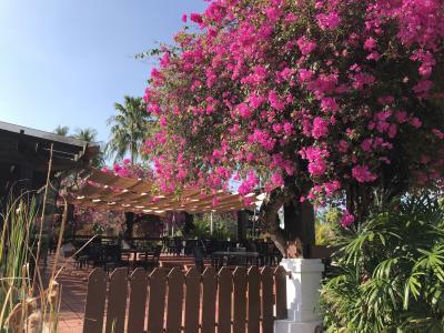 2019 ランカウイ島3泊4日の旅