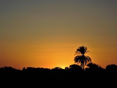 古代エジプト人に畏怖の念=神秘のエジプト・ナイル川クルーズ10日間 14(ルクソールへ クルーズ船3)