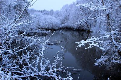 ◆福島・四季・彩々・Part,79・春呼ぶなごり雪の候