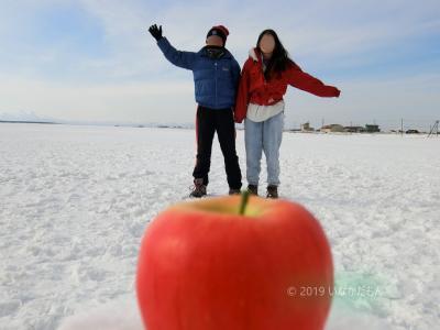 2019 爺とお嬢の北海道 リンゴに乗ったょ   (o^―^o)ニコッ