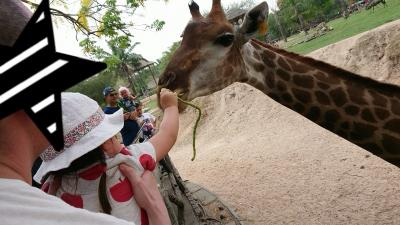 動物大好き。3歳子連れのバンコク&プーケット再び#2/3日目@バンコク カオキアオオープンズー