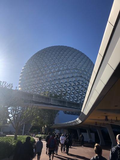 2019 エアカナダ ビジネスクラスでいくフロリダWDW & DCL 9日間 vol3 到着~2日目 EP&MK編