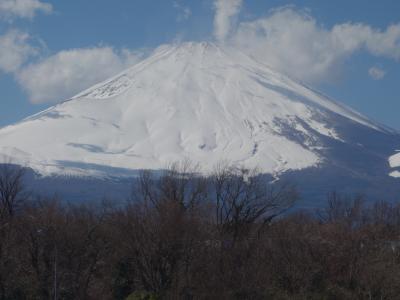 バスタ新宿から名古屋まで高速バスに乗りました。富士山がきれいに見えました。